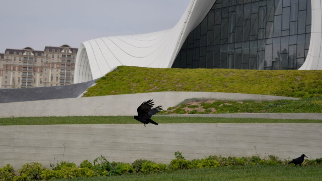 Heydar Aliyev Cultural Center Baku bird