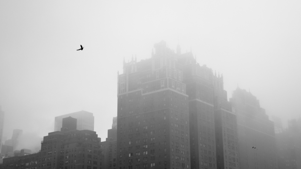 New York City Manhattan Tudor City bird mist
