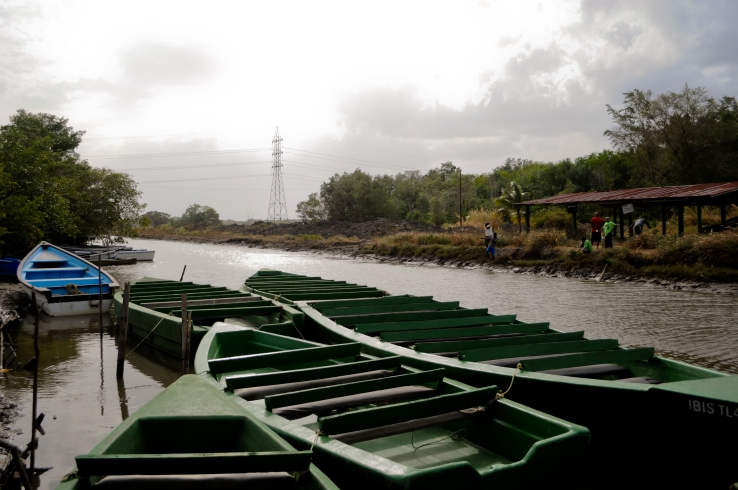These are the boats on which you navigate Caroni.